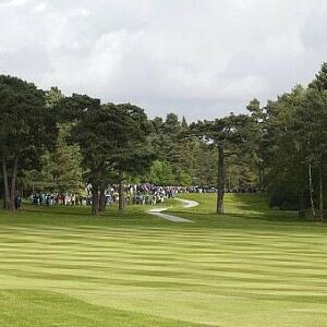 Golf news: Irish courses are among the best in the world.